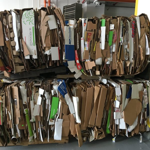 sorted-office-waste-disposal-recycling-metro-detroit